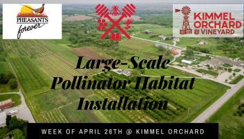 Large scale pollinator habitat installation
