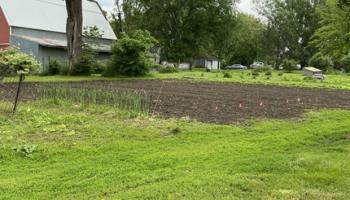 an unplanted plot of farmland