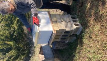 a beekeeper moving hives